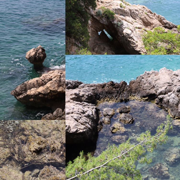 Lapad Dubrovnik.jpg