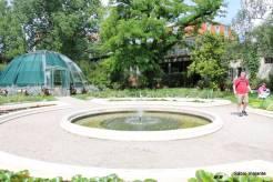 O Jardim Botânico era pequeno comparado aos de São Paulo e Rio de Janeiro, mas era bastante simpático.