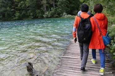 Passarelas de madeira cruzam boa parte do parque, assim você consegue chegar bem pertinho da água