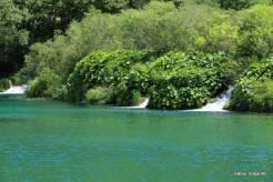 Água bem verde fosca