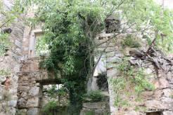Vegetação toma conta do vilarejo de Malo Grablje