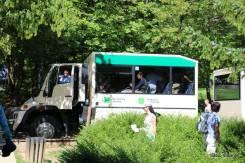 Ônibus/Trem panorâmico que nos deixou no ST2