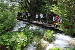 Passarelas passam sobre os rios e quedas d'água para você não perder nenhum detalhe!