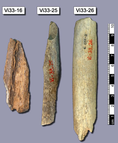 vindija neandertal bones